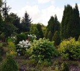 Ogrody wokół domu